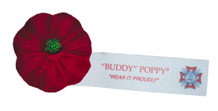 BuddyPoppy_COB_Rotated
